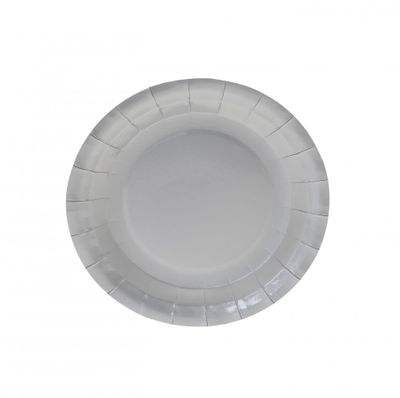 7 Inch Silver Party Plates