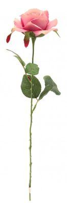 Rose Lavender