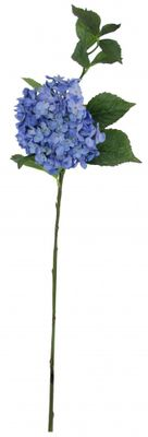 Large Hydrangea Light Blue