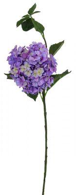 Large Hydrangea Lilac