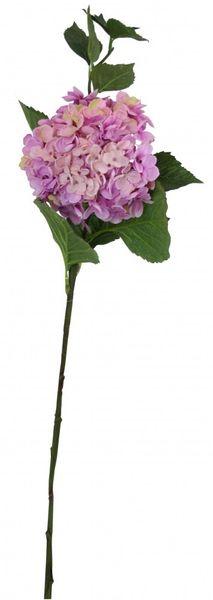 Large Hydrangea Purple Pink