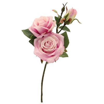 Paris Rose Lavender