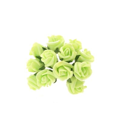 Lime Montana Rose