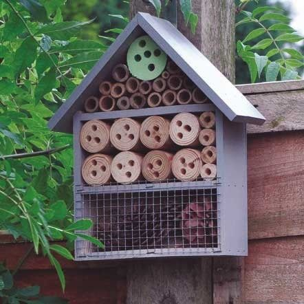Kingfisher Insect Hotel