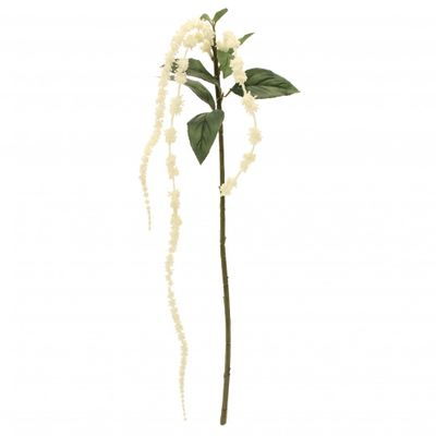 Cream Tassle Flowers