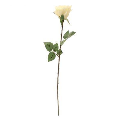 Kaia Rose in Cream