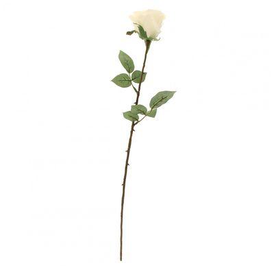 Kaia Rose in White