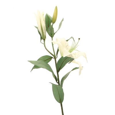 Lily Spray in White