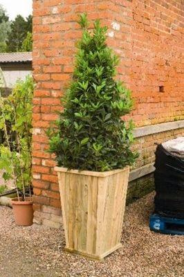 Forest Garden Tallboy Planter
