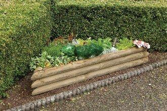 Forest Garden Corner Veggie Plot Kit