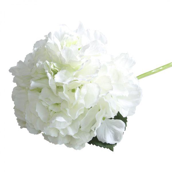 Cream Short Stem Hydrangea