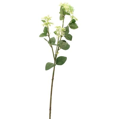 Viburnum Tinus Spray Green/White x 3