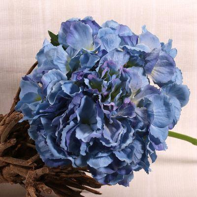 Blue Short Stem Hydrangea