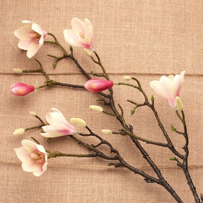Magnolia Branch Blush Pink