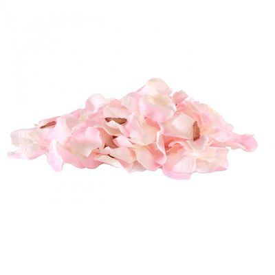 Champagne pink rose petals
