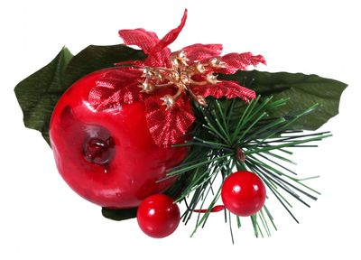 poinsettia apple and berry pick