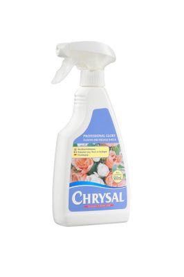 Chrysal Professional Glory