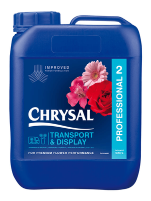Chyrsal professional 2 10 litre