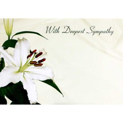 With Deepest Sympathy - Large White Lily Sympathy Cards (x25)