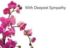 With Deepest Sympathy - Pink Orchids Sympathy Cards (x50)
