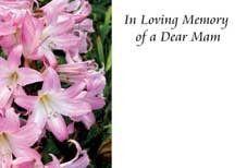 In Loving Memory Dear Mam Sympathy Cards (x50)