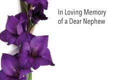In Loving Memory Dear Nephew - Purple Gladioli Sympathy Cards (x50)
