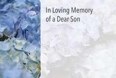 In Loving Memory Dear Son - Blue Hydrangea Sympathy Cards (x50)