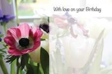 With Love on Your Birthday - Pink Anenome Greeting Cards (x50)