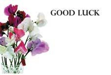 Good Luck - Sweet Peas Greeting Cards (x50)