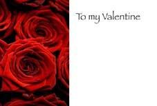 To my Valentine - Red Roses Greeting Cards (x50)