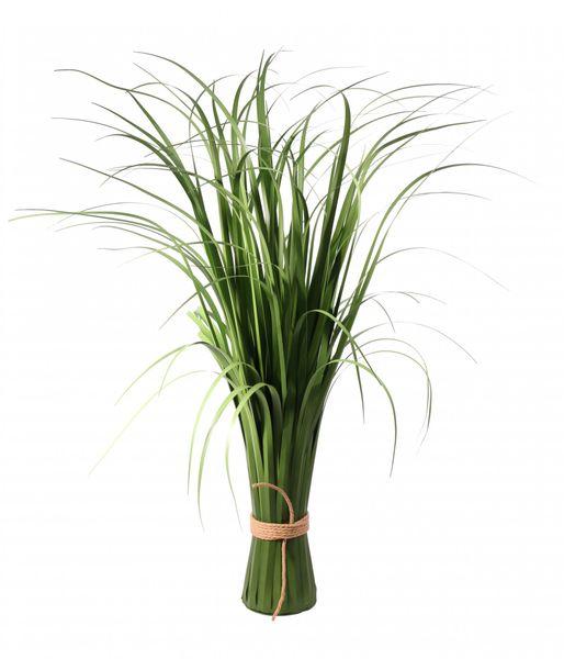 Freestanding Beargrass