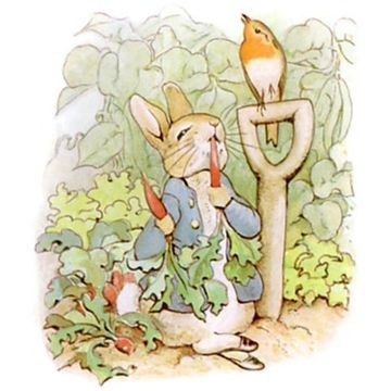 Peter Rabbit Category