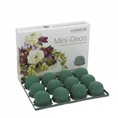 Oasis Mini Deco Foam