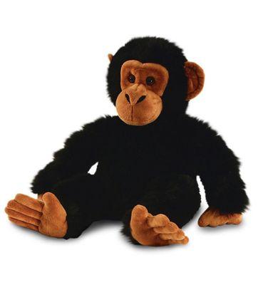 20cm Chimp