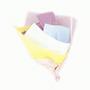 Assorted Pastel Colour Tissue paper sheets pk 10