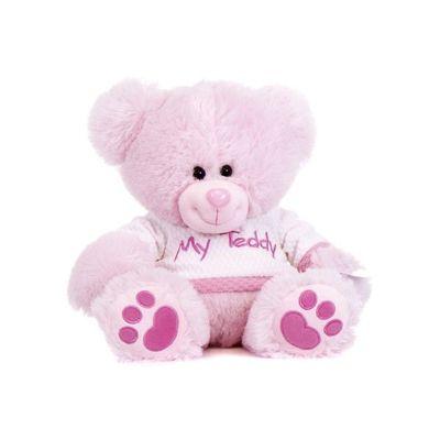 16 Inch Pink Thomas Bear With Tshirt