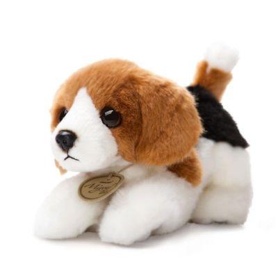 Miyoni Beagle 8inch